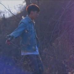 아이유, 설리, 엠버, 그리고 자아를 갖는 아이돌