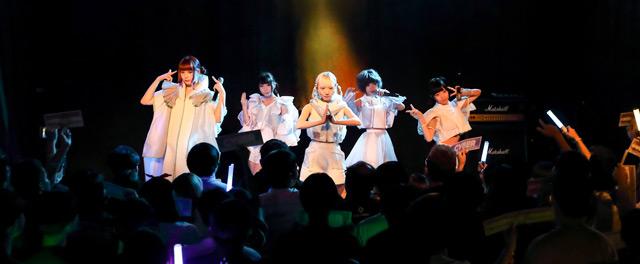 ⓒ 집호랑이 페스티벌 | 김시열